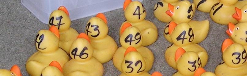 Outrage as Stretton Focus Boycotts Duck Races